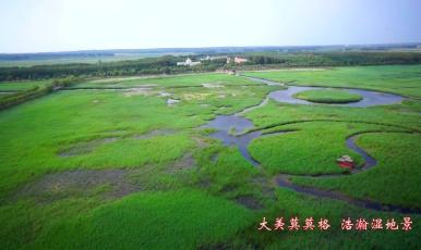 大美莫莫格 浩瀚湿地景