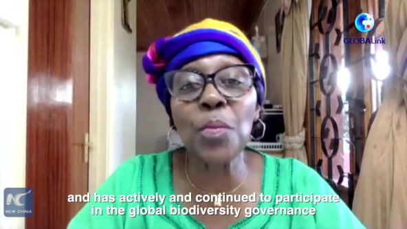 GLOBALink | UN official applauds China's contribution to global biodiversity agenda