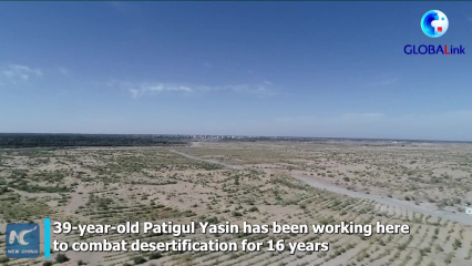 GLOBALink | Uygur woman plants trees in China's largest desert for 16 years